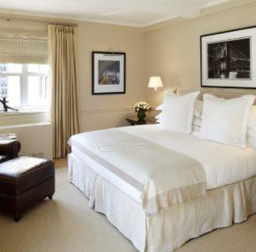 stay - hotel